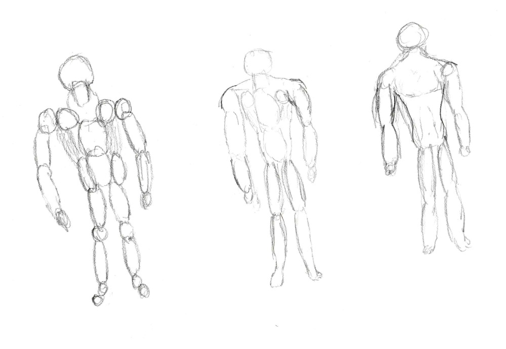 anatomy drawing 9